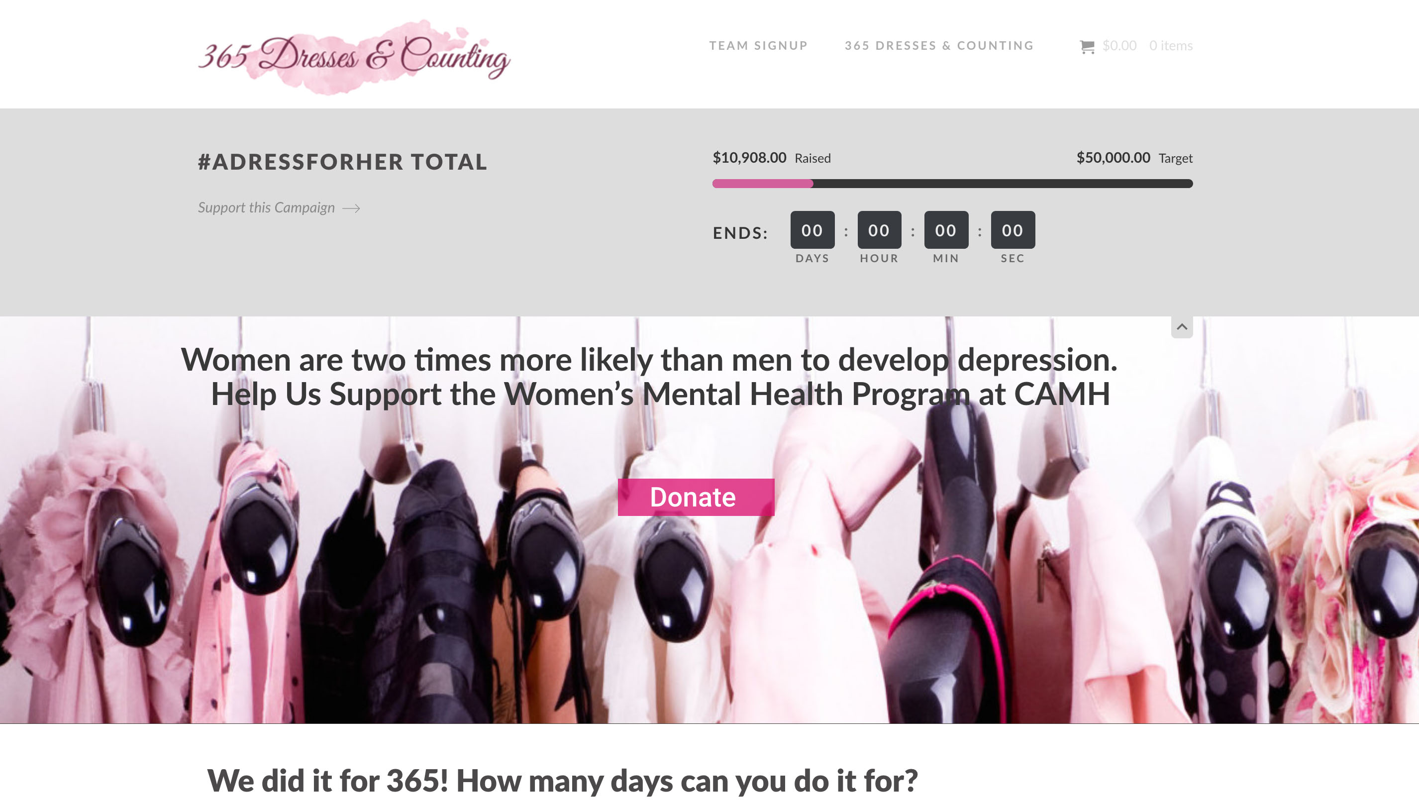 Charity - 365 Dresses - Hilborn Digital Website Design