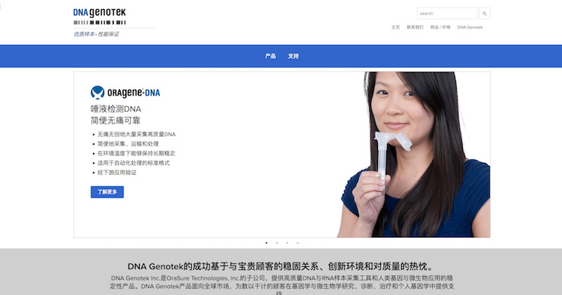 Chinese Website Development Project